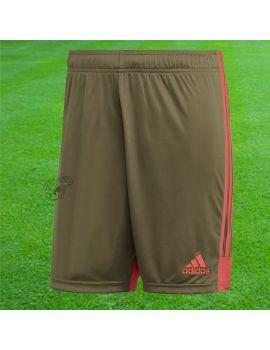 Boutique pour gardiens de but Shorts Joueur (sans protection)  ADIDAS - Short Tastigo 19 Kaki DP3254 / 231