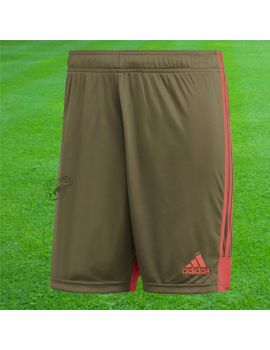 Boutique pour gardiens de but Shorts gardien junior  ADIDAS - Short Tastigo 19 Kaki Junior DP3254 / 231
