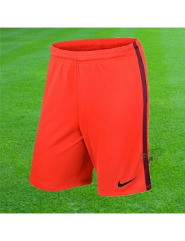 Boutique pour gardiens de but Shorts Joueur (sans protection)  Nike - Short Knit league Saumon 725881-671