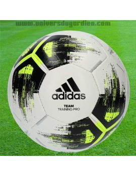 Boutique pour gardiens de but Ballons  ADIDAS - Lot de 10 Ballons Team Training Pro CZ2233