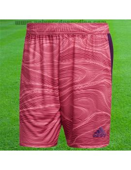Boutique pour gardiens de but Shorts Joueur (sans protection)  adidas - Short GK Codivo 21 Rose GT8408 / 51