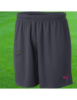 Boutique pour gardiens de but Shorts Joueur (sans protect.)  Puma - Vencida shorts 700790 51