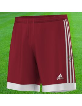 Boutique pour gardiens de but Shorts Joueur (sans protect.)  Adidas - Short Tastigo 15 rouge S22355