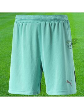 Boutique pour gardiens de but Shorts gardien de but  Puma - Short Stadium 702090 34